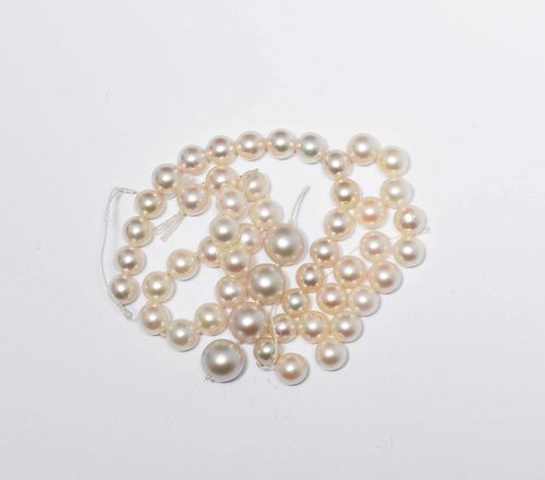 LOOSE PARTS OF PEARL CHAINS AND 1 WEDDING BAND. 4 cultured pearls of ca. 10 mm Ø - 15 cultured pearls of ca. 7.9 mm Ø - 2 cultured pearls of 7 mm Ø - 15 cultured pearls of ca. 7.9 Ø - 18 cultured pearls of 7.5 mm Ø. Matching wedding band, 3g, yellow gold 585, dated 1949.