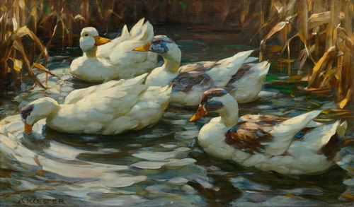 KOESTER, ALEXANDER (Bergneustadt 1864 - 1932 Munich) Four ducks in a pond. Oil on canvas. Signed lower left: A KOESTER. 45.5 x 76.5 cm.